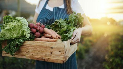 Eine Frau in einem Kittel hält eine Holzkiste mit Salat, Radieschen, Karotten und anderem Gemüse.