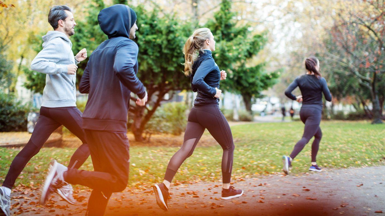 Gesund durch Bewegung: Eine Gruppe von vier jungen Menschen geht gemeinsam im Park joggen.