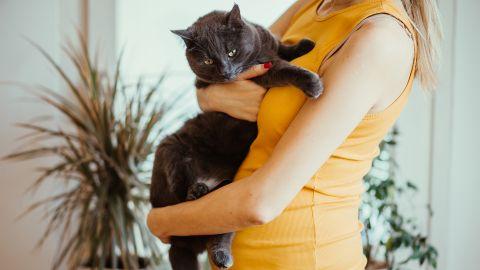 Eine schwangere Frau hält eine schwarze Katze auf dem Arm.